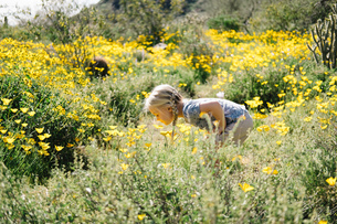 Girl in wildflowers meadow smelling flowers, Wadell, Arizona, USAの写真素材 [FYI03582321]