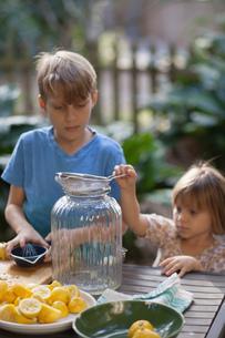 Boy and two young sister preparing lemon juice for lemonade at garden tableの写真素材 [FYI03582570]