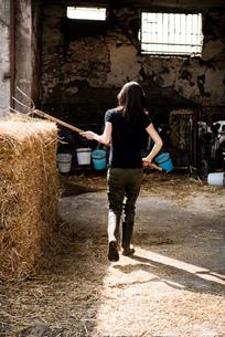 Rear view of organic female farmer with pitch fork on dairy farmの写真素材 [FYI03582768]