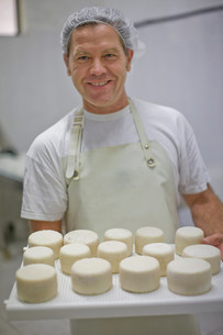 Worker at a cheese dairyの写真素材 [FYI03582997]