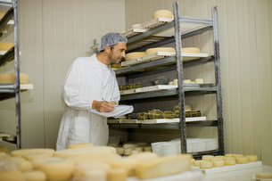 Worker at a cheese dairyの写真素材 [FYI03583011]