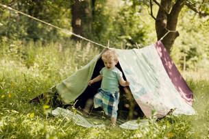 Boy in homemade tent in gardenの写真素材 [FYI03583103]