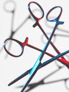 Close up of scissor forcepsの写真素材 [FYI03583890]