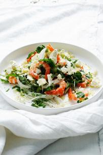 Plate of shrimp saladの写真素材 [FYI03584123]