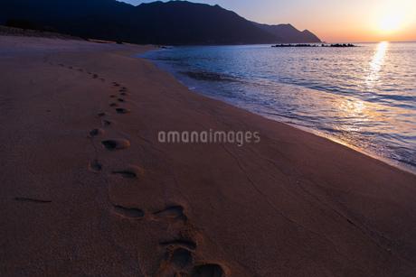 早朝の海岸の写真素材 [FYI03584288]