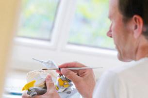 Dentist working on set of teethの写真素材 [FYI03584501]