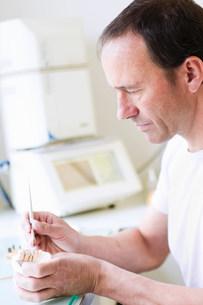 Dentist working on denturesの写真素材 [FYI03584510]
