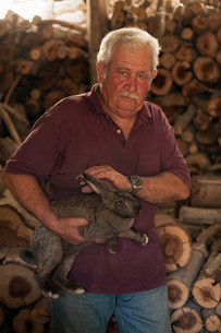 Older man petting rabbit in shedの写真素材 [FYI03584895]