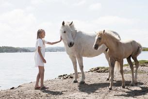 Girl petting horses on sandy beachの写真素材 [FYI03585149]