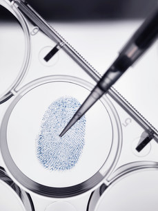 Pipette sampling finger print in labの写真素材 [FYI03585271]