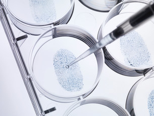 Pipette sampling finger print in labの写真素材 [FYI03585272]