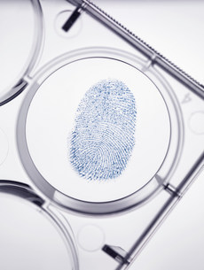 Finger print in forensic labの写真素材 [FYI03585273]