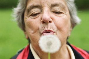Older woman blowing dandelion in parkの写真素材 [FYI03585470]