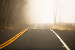 Saddle road, Big Island, Hawaii, USAの写真素材 [FYI03585907]