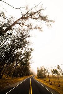 Saddle road, Big Island, Hawaii, USAの写真素材 [FYI03585908]