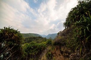 Pololu Valley, Big Island, Hawaii, USAの写真素材 [FYI03585913]
