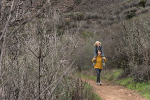 Woman walking along rural pathway, carrying son on shouldersの写真素材 [FYI03586933]