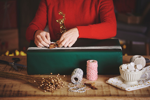 Woman wrapping christmas giftの写真素材 [FYI03587242]