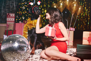 Young woman stroking dog at party, dog wearing santa deely boppersの写真素材 [FYI03587816]