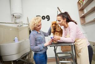 Female groomer selling shampoo to customer at dog grooming salonの写真素材 [FYI03587868]