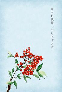 寒中お見舞い ハガキ 南天 水彩画 文字ありのイラスト素材 [FYI03588105]