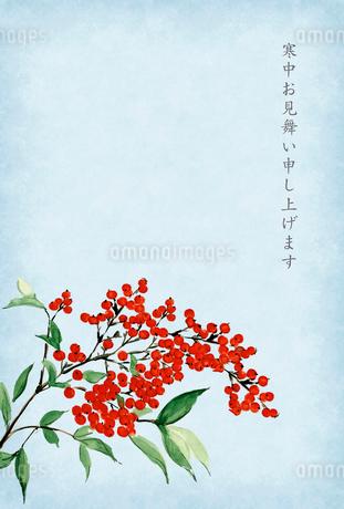 寒中お見舞い ハガキ 南天 水彩画 文字ありのイラスト素材 [FYI03588114]