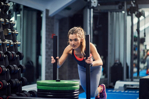 Young woman training, pushing weight sled in gymの写真素材 [FYI03588864]