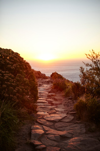 Pathway on Lions Head Mountain, Western Cape, Cape Town, South Africa, Africaの写真素材 [FYI03589149]