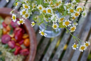 Bowl of vegetarian food by camomile flowersの写真素材 [FYI03589867]
