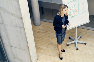 High angle view of young businesswoman giving international business presentationの写真素材 [FYI03589995]