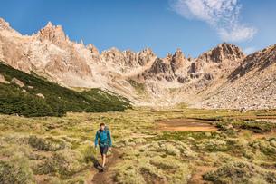 Male hiker trekking in mountain valley, Nahuel Huapi National Park, Rio Negro, Argentinaの写真素材 [FYI03590183]