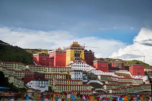 Katok Monastery and building development on hillside, Baiyu, Sichuan, Chinaの写真素材 [FYI03590430]