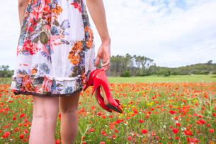 Woman walking in poppy field carrying high heel shoes, Palma de Mallorca, Islas Baleares, Spain, Eurの写真素材 [FYI03590886]