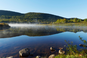 Scenic view,  Colgate Lake Wild Forest, Catskill Park, New York State, USAの写真素材 [FYI03591364]