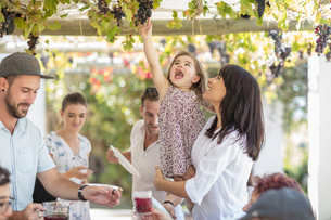 Mother and daughter reaching up to grapevineの写真素材 [FYI03592395]