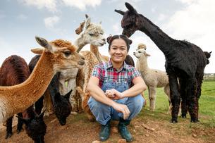 Portrait of woman with alpacas on farmの写真素材 [FYI03593156]