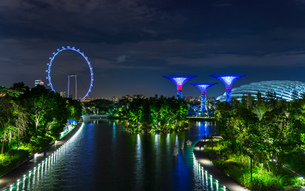 Blue ferris wheel and Supertree Grove on Marina Bay waterfront at night, Singapore, South East Asiaの写真素材 [FYI03593447]