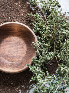 Composition of wooden bowl, earth and dry fernsの写真素材 [FYI03593478]