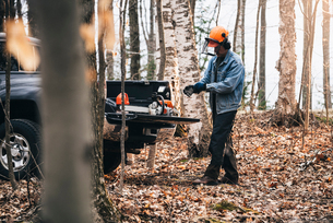 Male logger putting on protective gloves in autumn forestの写真素材 [FYI03593490]