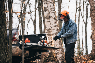 Male logger putting on protective gloves in autumn forestの写真素材 [FYI03593491]