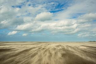 Beach at low tide, Gravelines, Nord-Pas-de-Calais, Franceの写真素材 [FYI03593532]