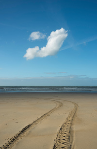 Beach at low tide with vehicle tire tracks, Gravelines, Nord-Pas-de-Calais, Franceの写真素材 [FYI03593534]