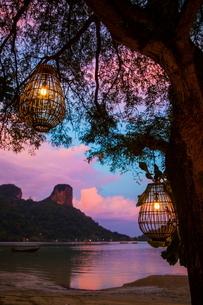 Lights hanging in tree at sunset, Krabi, Thailand, Asiaの写真素材 [FYI03594058]