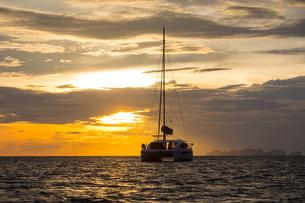 Yacht sailing on sea at sunset, Ban Koh Lanta, Krabi, Thailand, Asiaの写真素材 [FYI03594064]