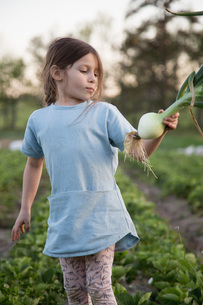Young girl on farm, holding freshly picked onionの写真素材 [FYI03595460]