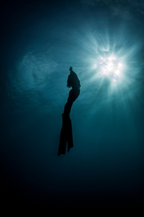 Underwater view of silhouetted female free diver moving up towards sun rays,  New Providence, Bahamaの写真素材 [FYI03595696]