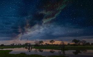 Starry night sky over swamp, Okavango Delta, Botswana, Limpopo, South Africa, Africaの写真素材 [FYI03595723]