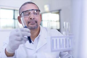 Laboratory worker holding liquid filled test tubeの写真素材 [FYI03595785]
