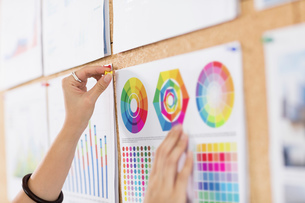 Woman pinning up colour charts and graphsの写真素材 [FYI03596361]
