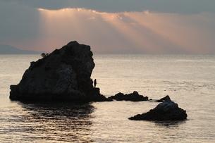海の木漏れ日の写真素材 [FYI03596465]